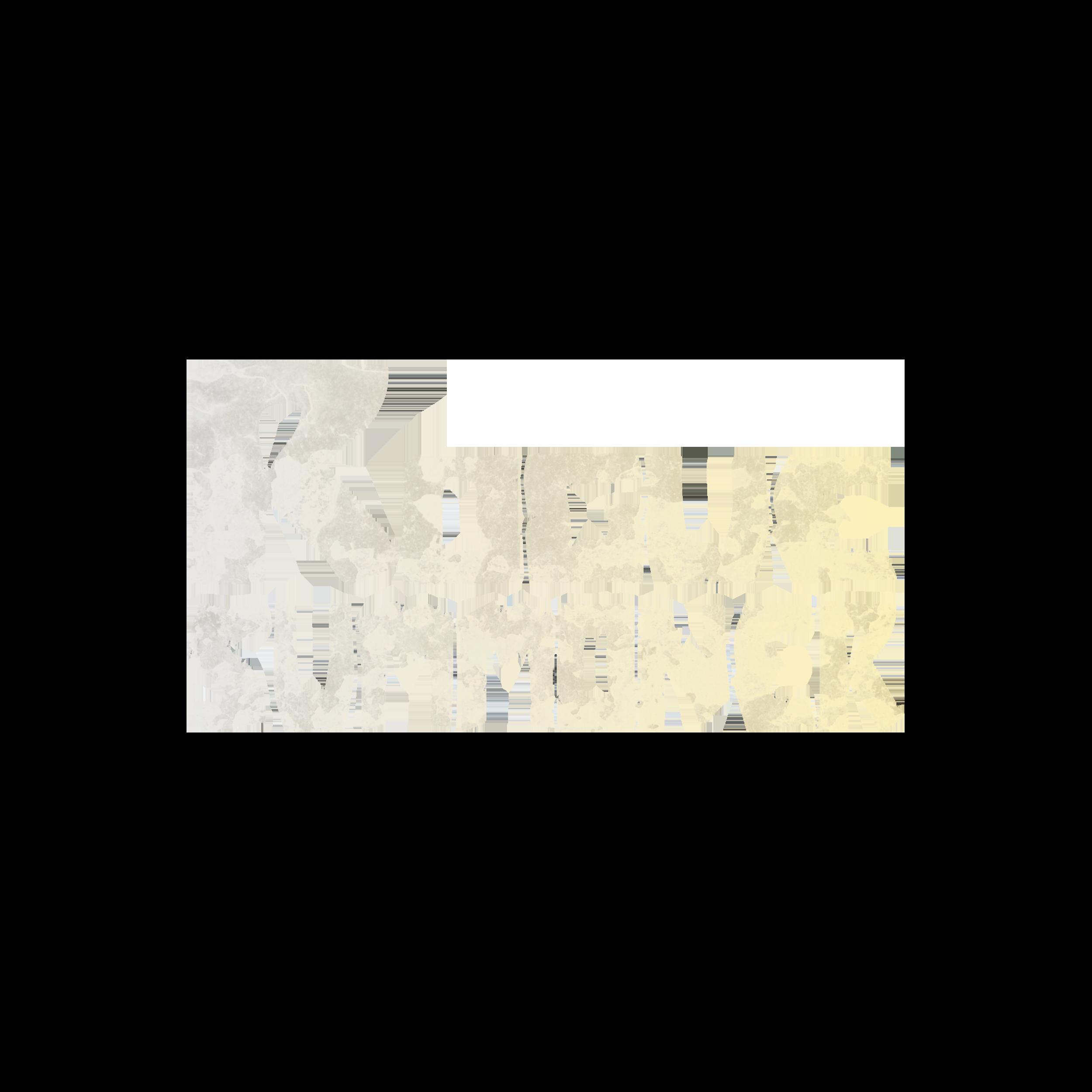 Rogue Summoner logo